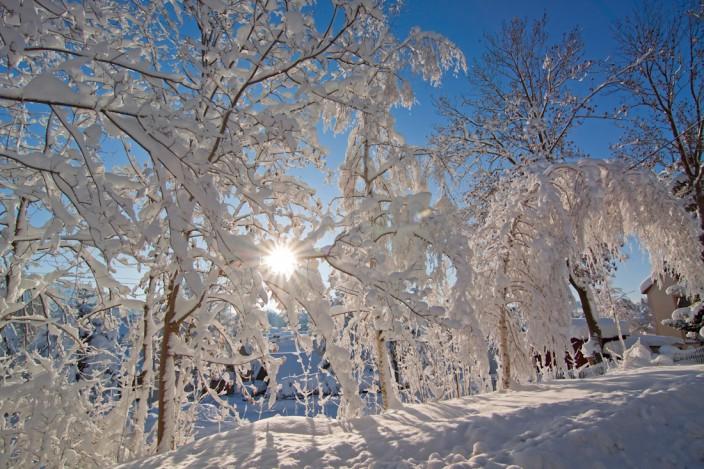 Der Tag nach den Schneemassen